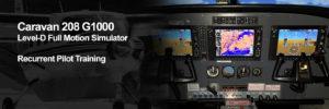 208 G1000 Recurrent Pilot Training