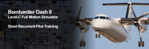 Dash8 Short Recurrent Page Header